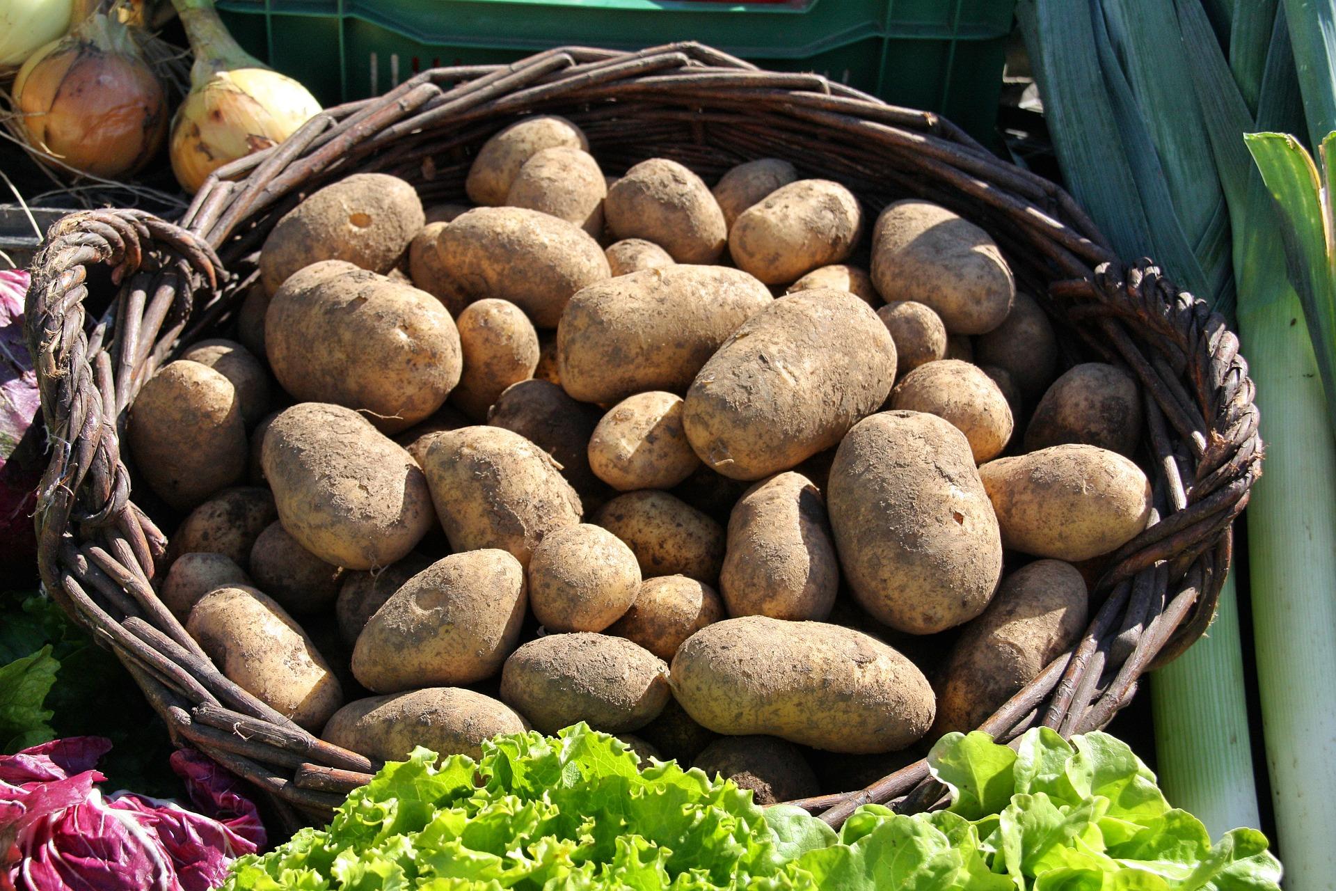 ziemniaki wkoszu